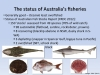 The status of Australian fish stocks