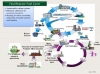 Fast Reactor Fuel Cycle
